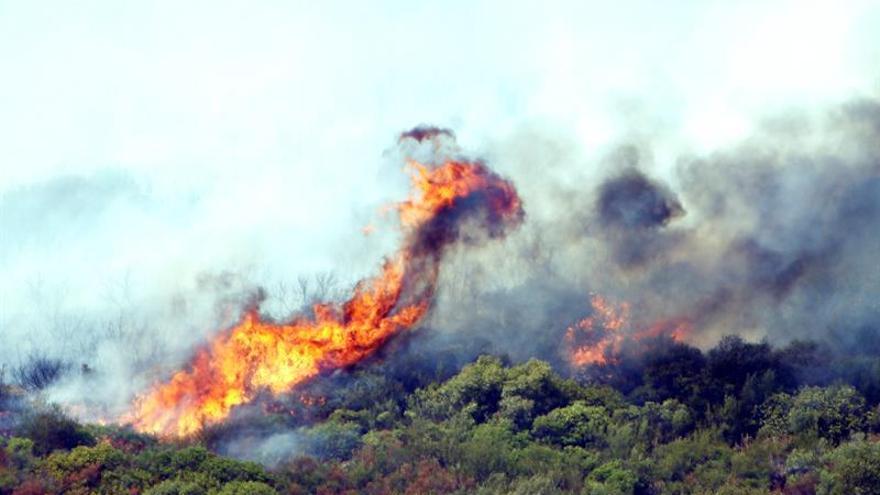 Declarado otro incendio en una zona de difícil acceso de Pedreguer (Alicante)
