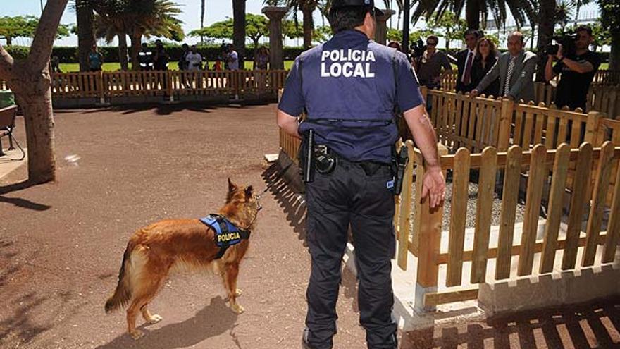 Del nuevo parque para perros #6