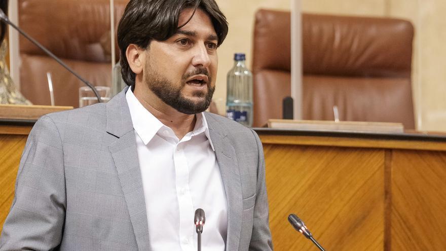 El parlamentario de Adelante Andalucía Ismael Sánchez, en el Pleno de la Cámara.