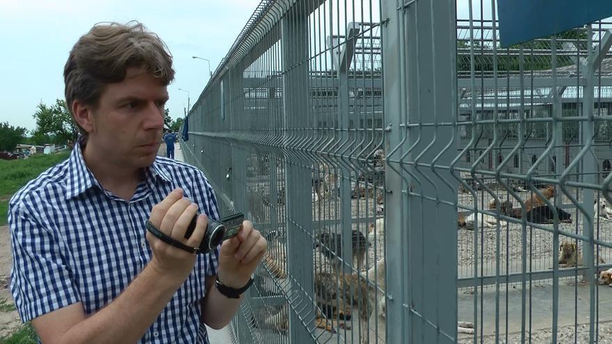 Claudiu Dumitriu en la perrera de Galati (Rumanía)