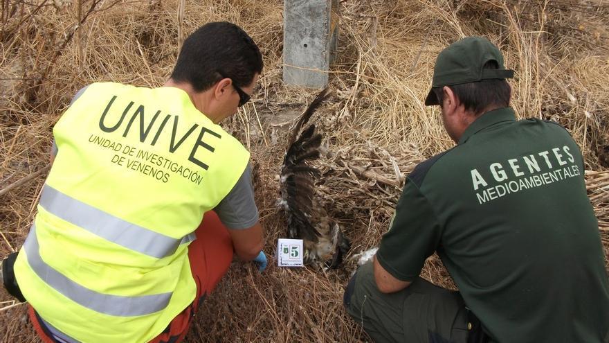 Agentes medioambientales. Foto: APAM-CLM.