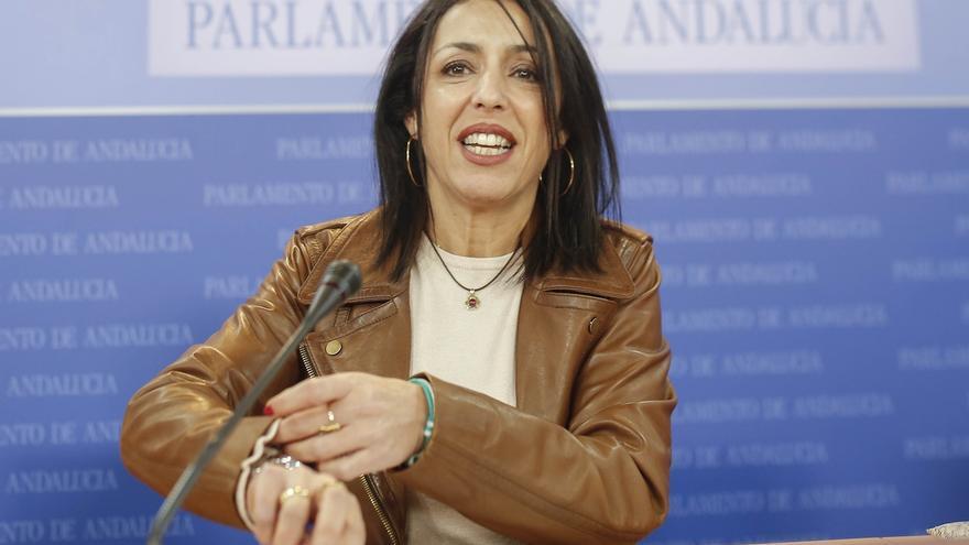 Bosquet plantea reducir de 17 a 16 los miembros de las comisiones con apoyo de PP, Cs y Vox y rechazo de PSOE y Adelante