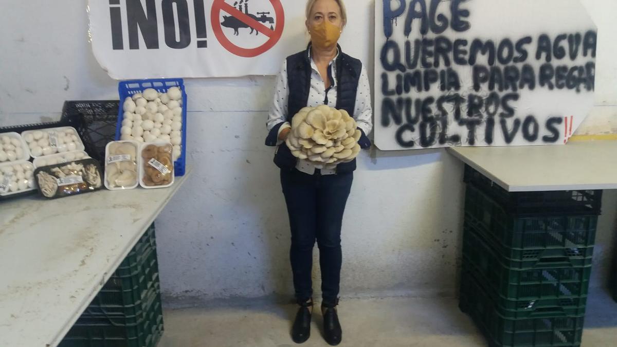 El rechazo ciudadano a la macrogranja porcina entre Quintanar del Rey y Villanueva de la Jara ha sido constante
