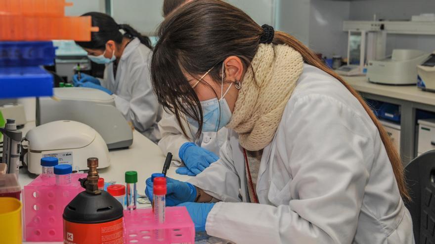 Una investigadora valenciana al laboratori.