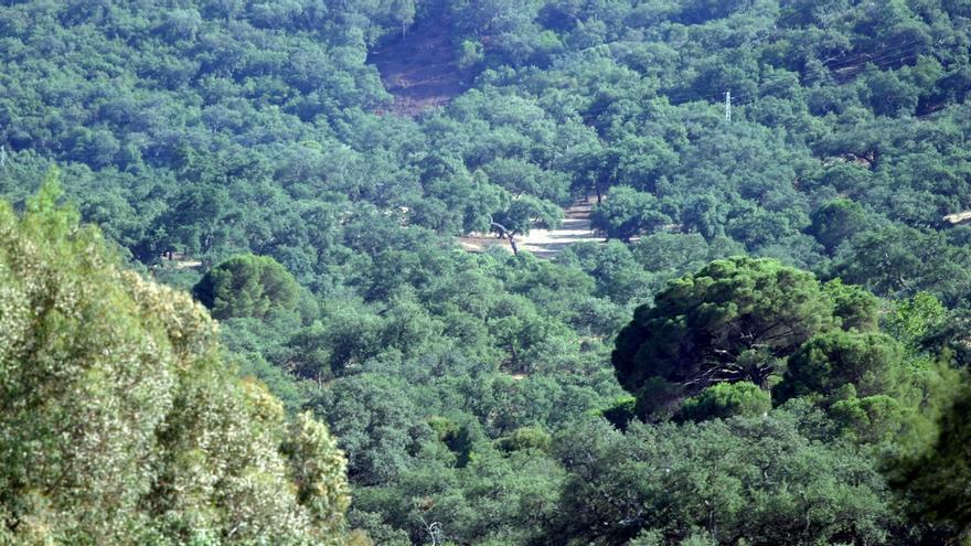 El Castillo de las Guardas amplía su oferta de turismo natural con un sendero circular de 14,4 kilómetros