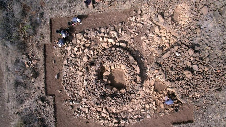 Una plaga de gorgojos que se creía llegada de América estaba ya en Canarias antes de la Conquista