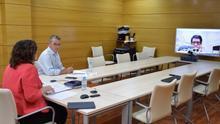 Un momento de la reunión telemática de la consejera de Economía con el sector de Economía Social de Castilla-La Mancha