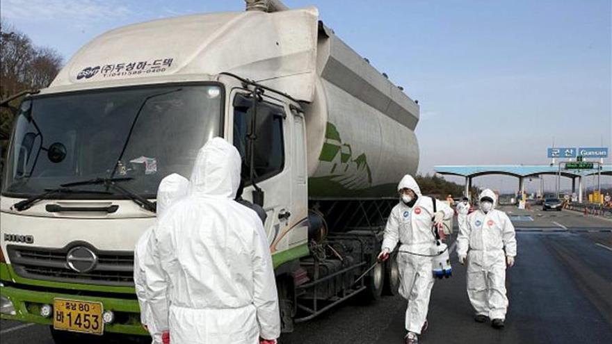 Corea del Sur confirma un nuevo caso de gripe aviar en un perro