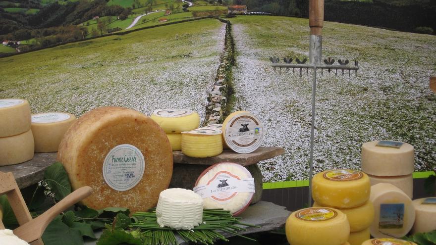 Valles Pasiegos promueve un proyecto gastronómico para fomentar el consumo de productos autóctonos