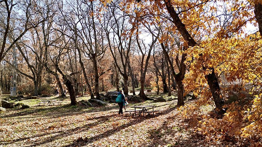 Mesas en las cercanías de la ermita.