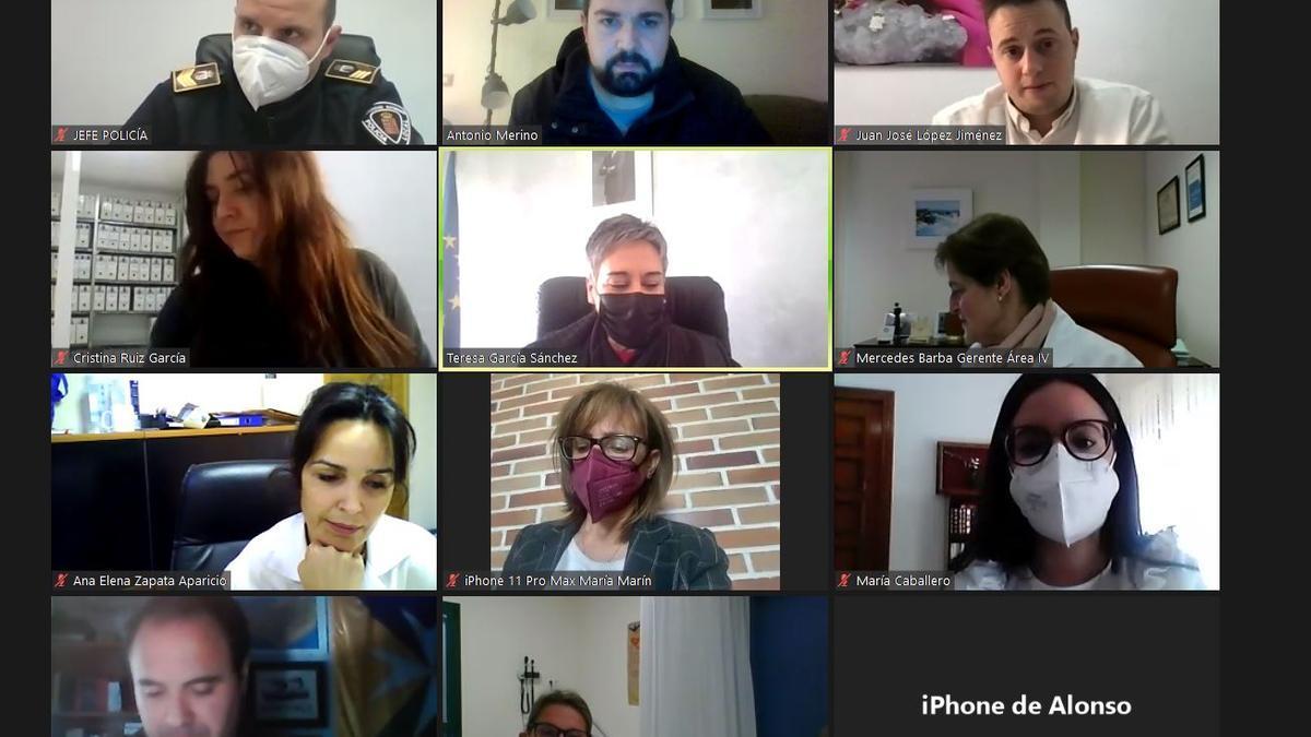 Imagen de la reunión telemática