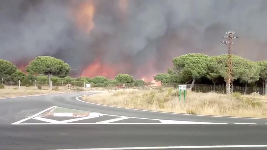 Fuego en las carreteras próximas a Doñana.
