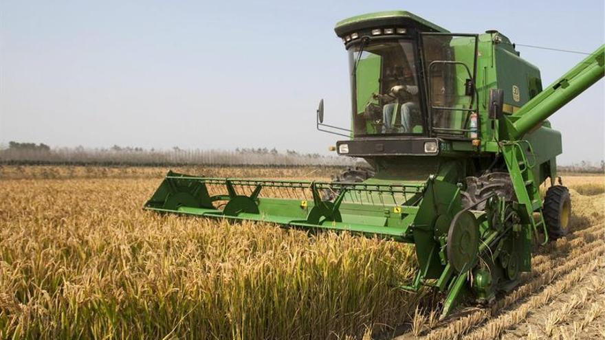 El sector agropecuario argentino, el gran beneficiado de la caída del peso