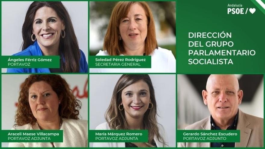 Nueva dirección del Grupo Socialista en el Parlamento andaluz
