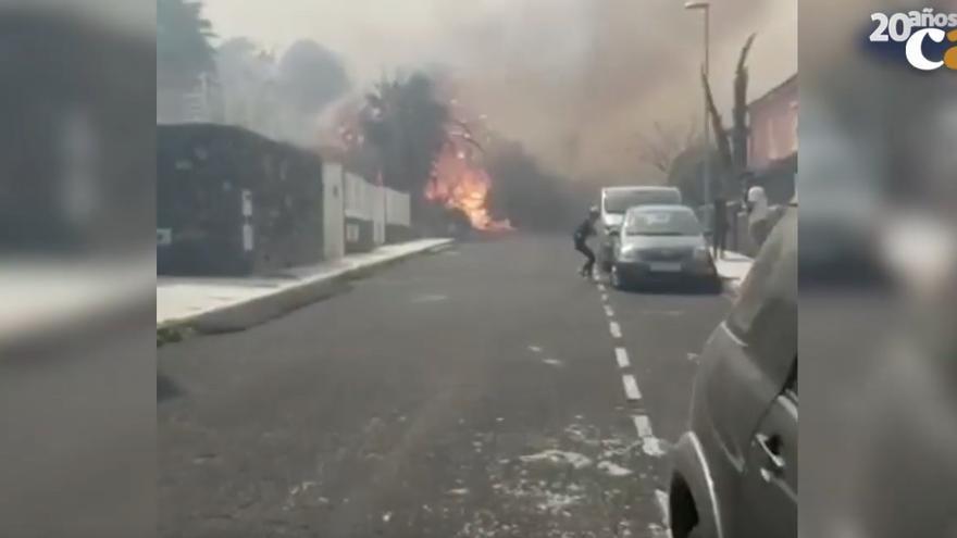 Así fue el fin de semana de pesadilla en Canarias por el viento, los incendios y la peor calima en 40 años