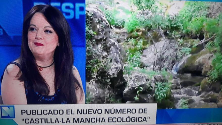 La periodista Alicia Avilés en el programa televisivo 'Castilla-La Mancha Despierta'