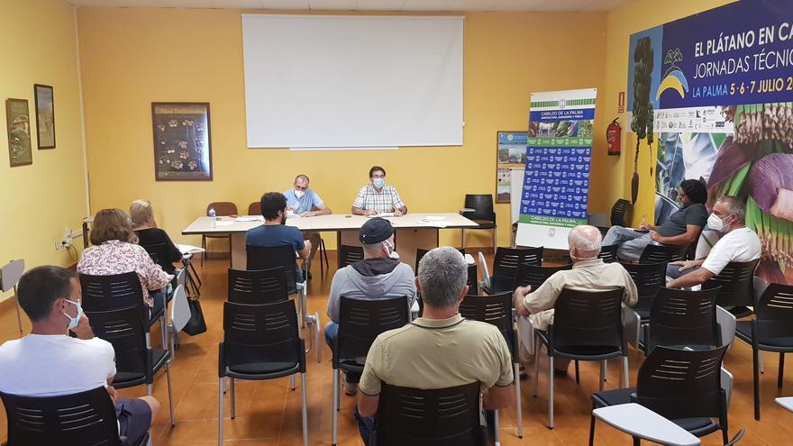 Reunión del vicepresidente del Cabildo de La Palma, José Adrián Hernández,con un grupo de agricultores que poseen plantaciones de olivo en la Isla.