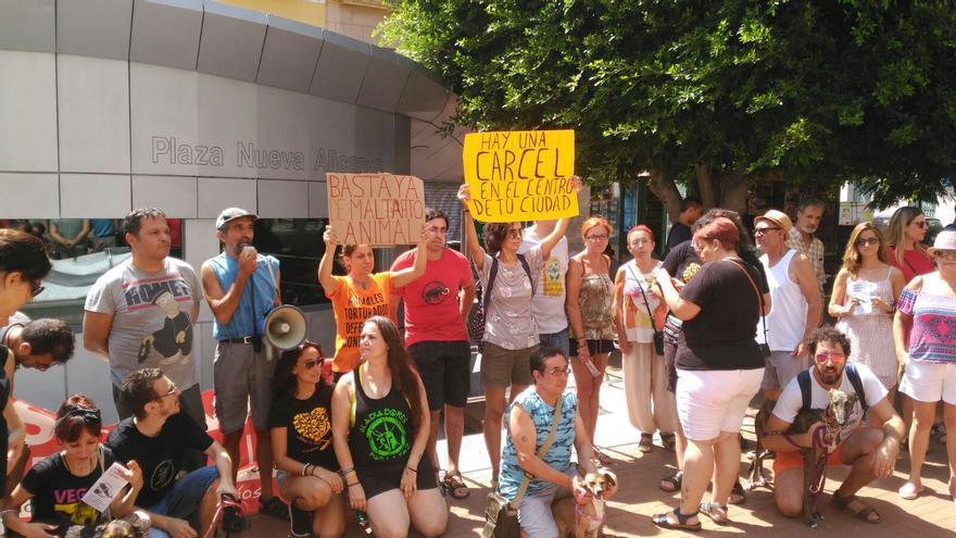 Concentración de protesta ante el acuario de la Plaza Nueva, en Alicante.