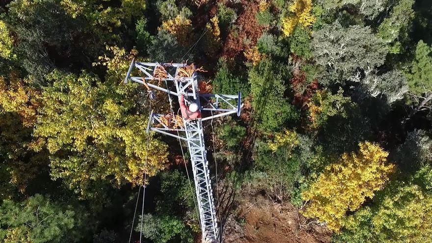 Colocación de salvapájaros en líneas eléctricas de alta, media y baja tensión / Eiffage
