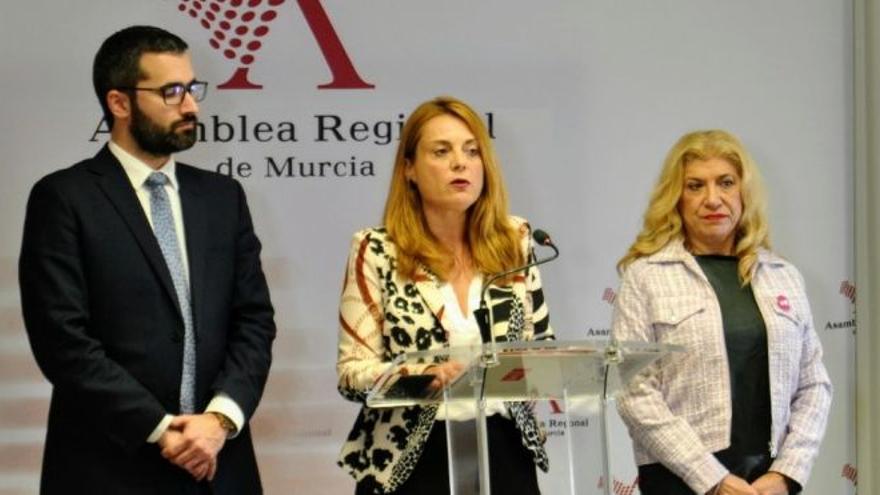 """Virginia Lopo (PSOE): """"Para afrontar esta crisis, la Región  de Murcia tiene que pasar de ser ejemplo de malas prácticas a ejemplo de regeneración"""""""