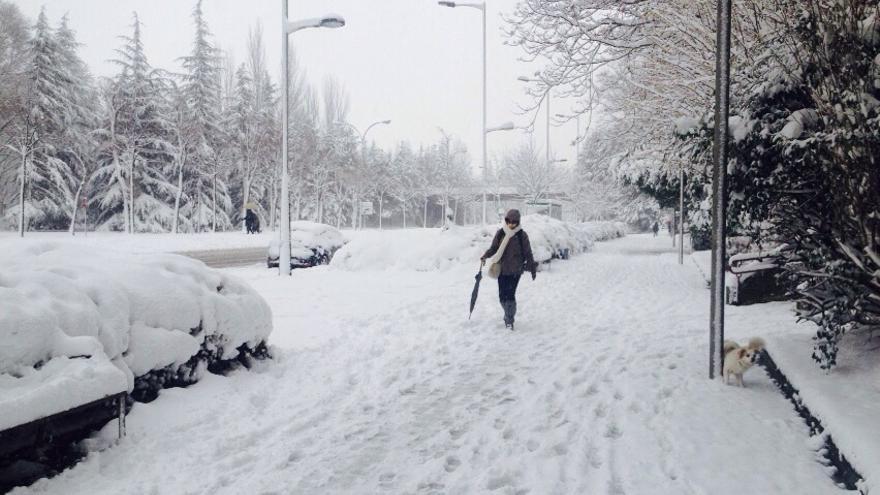 La nieve ha cubierto gran parte de las calles de Euskadi.