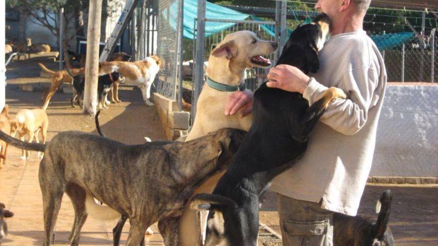 Sociedad Protectora de Animales y Plantas de Ayamonte (Huelva)