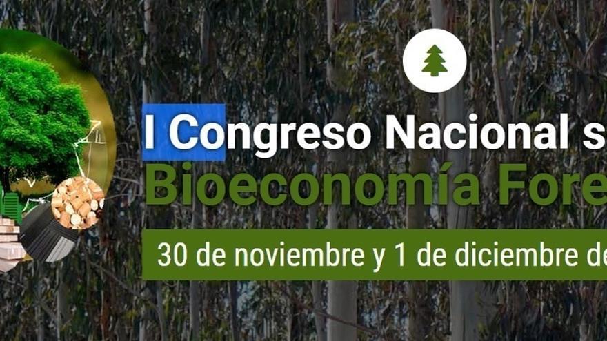 Casi 200 personas inscritas el I Congreso Nacional de Bioeconomía Forestal que se celebrará en Santander