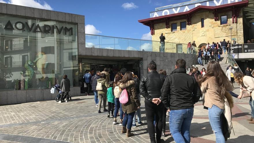 Aquarium de San Sebastián ofrece unidades didácticas para los escolares que se pierdan sus visitas