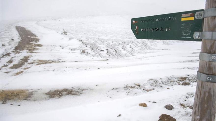 Los efectivos de rescate llegan hasta los montañeros muertos y preparan su evacuación