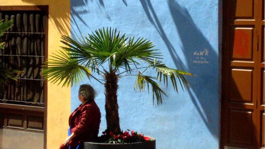 'Macetero y planta o asiento con sombra'. Fotógrafo: David Estal