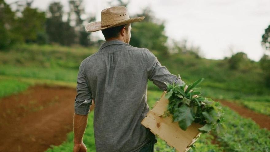 Captura del vídeo de promoción para fomentar el consumo de productos locales del Gobierno de Canarias.