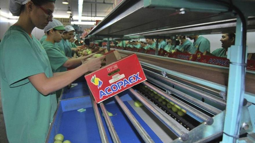 Trabajadoras de una firma de alimentación / Foto: Efe.