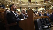 Vox en el Congreso de los Diputados