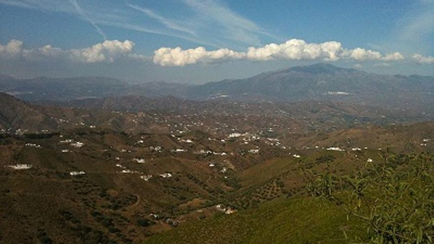 El fenómeno es común en zonas como la Axarquía malagueña