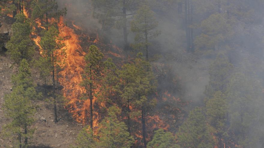Incendio en Inagua en 2007
