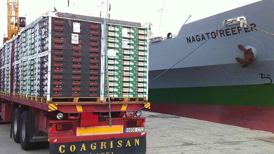 Embarque de tomate para exportación. (agroaldea.es)