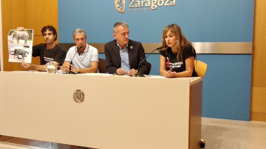 Rueda de prensa de Podemos y Aministía Animal para denunciar el estado de los animales