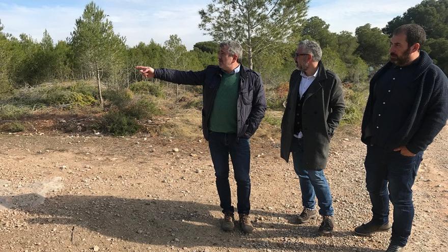 Josep Bort, Juanma Ramón i Carles Martí durant la seua visita al bosc de la Vallesa.