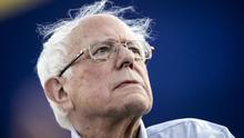 Siete propuestas de Bernie Sanders, el candidato que pone nerviosa a la élite liberal de EEUU