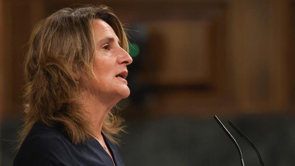 Teresa Ribera, este lunes en el Congreso.