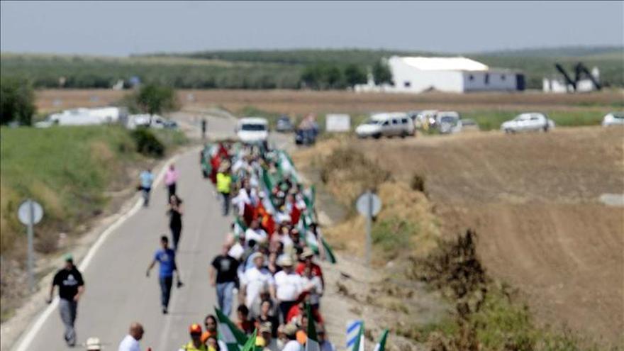 Cientos de jornaleros del SAT entran otra vez en una finca de Defensa en Sevilla
