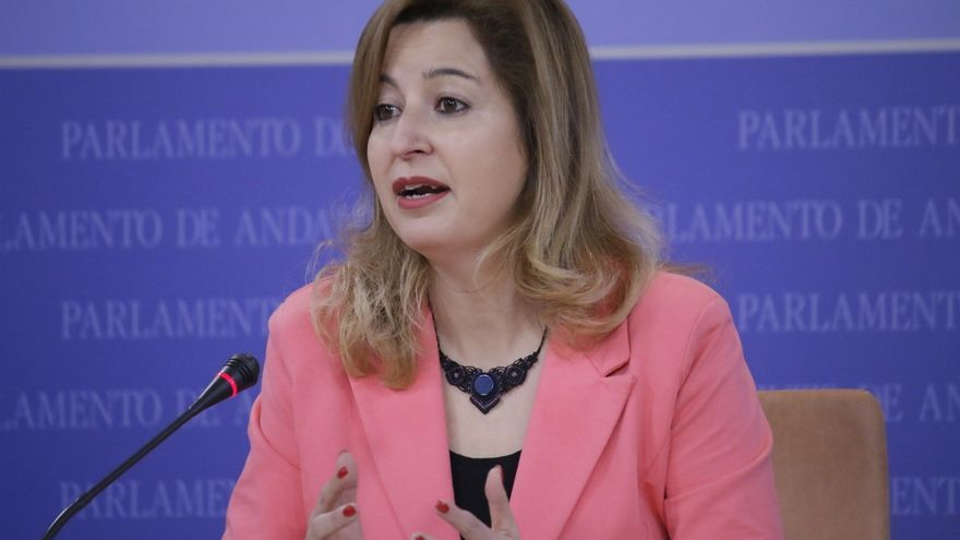 "Podemos Andalucía ve ""bases"" para llegar a un consenso sobre el modelo de financiación tras reunirse con la Junta"