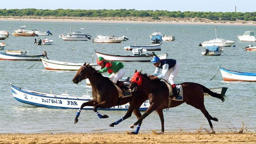 La participación será de un total de 40 caballos