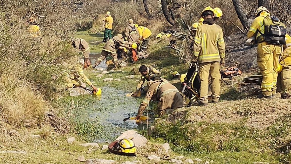 Más de 370 hombres y mujeres trabajan arduamente para extinguir el fuego en Córdoba, con el apoyo de cuatro aviones hidrantes.