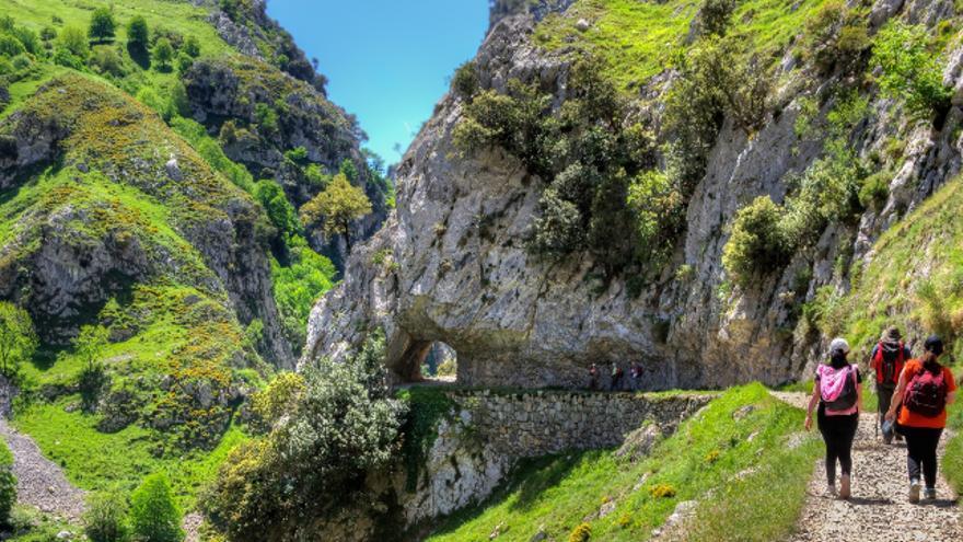 La Ruta del Cares es uno de los trayectos preferidos por los senderistas en Picos de Europa.