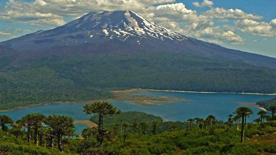 Parque Nacional Conguillio / Rodrigo Amolef Gutíerrez vía Flickr (CC)