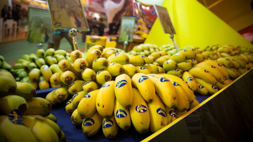 Plátano de Canarias expuesto en un centro comercial