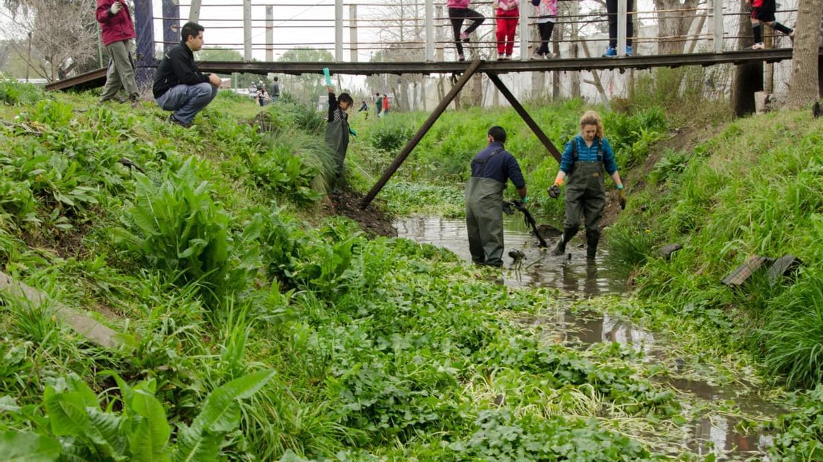 Un día de limpieza organizado por vecinos del arroyo El Gato, en La Plata.