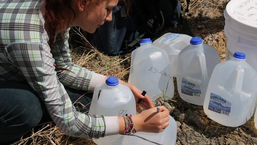 Activistas de la organización dejan mensajes de ánimo en las botellas