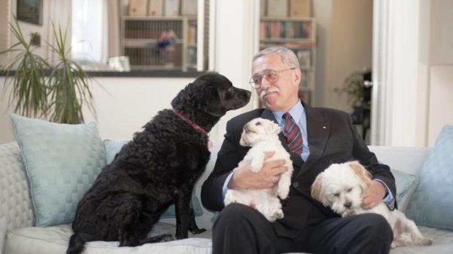 Philip Wollen con sus perros adoptivos